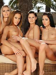Four amazing vixens in sultry orgy pictures